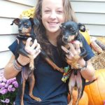 Girl with two dogs