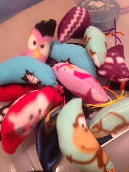 Toys N Joys Website : Catnip toys town n country animal hospital burlington nc