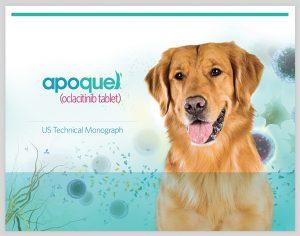 apoqueldog