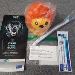 dental goody bag